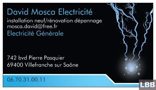 electricien 69400