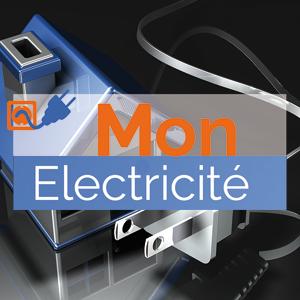 electricien 94100