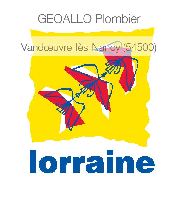 plombier 54230